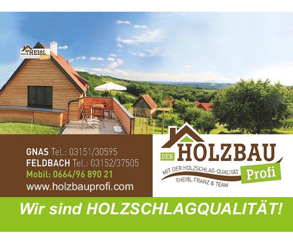 Holzbau Profi - Theißl Franz
