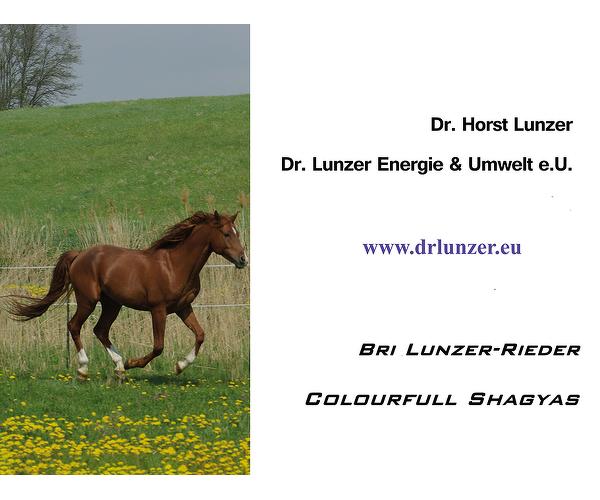 Dr. Lunzer Energie und Umwelt E.U.