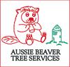 Aussie Beaver Chipping
