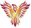 DSM Phoenix Upholstery & Trim