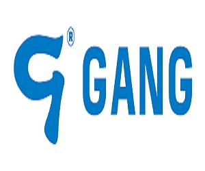Lojas Gang BR
