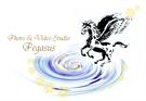 Photo & Video Pegasus