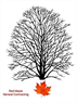 Red Maple General Contracting