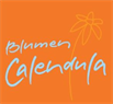 Blumen Calendula