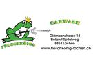 Waschanlage Froschkönig