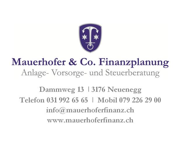 Mauerhofer & Co. Finanzplanung