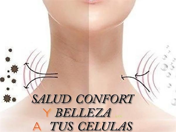 SALUD CONFORT Y BELLEZA
