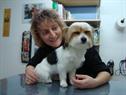 Sandra's Hundesalon