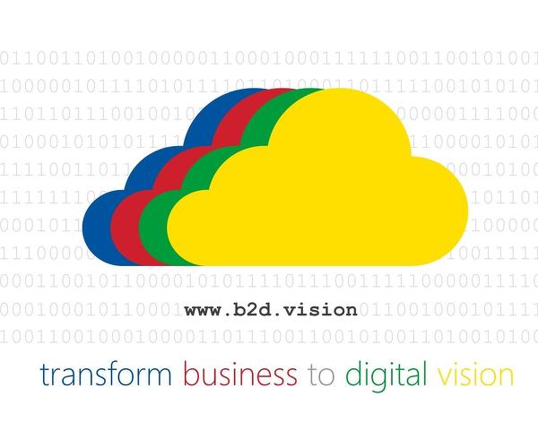 b2d Vision