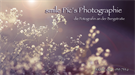 smile Pic´s Photographie