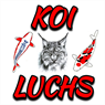 Koi-Luchs
