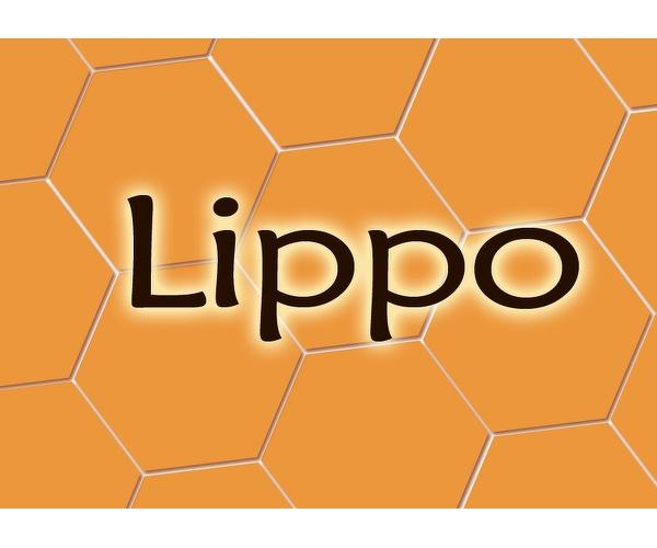 Lippo-elämyspalvelut