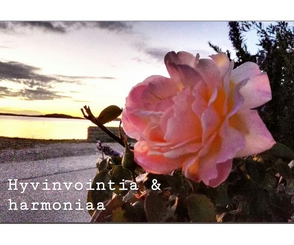 Hyvinvointia & harmoniaa