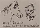 Hiirijärven Fysioterapia