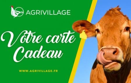 AgriVillage Boutique en ligne