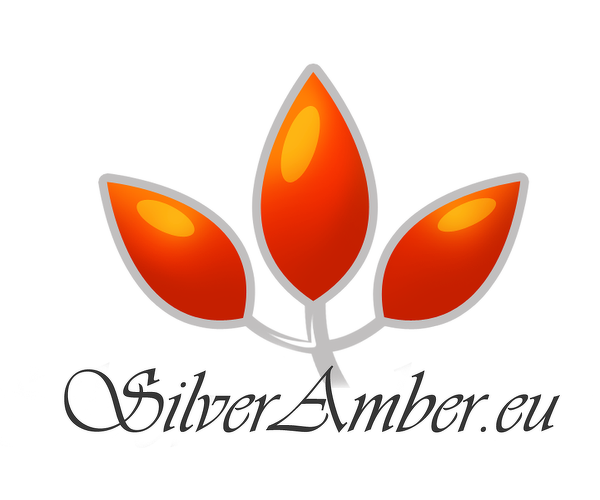 Silver Amber Jewellery