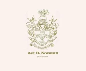 Ari D Norman
