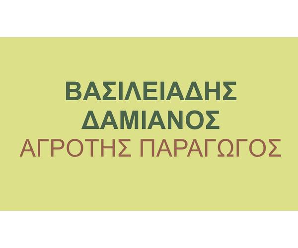 Georgikes Epicheirisis Vasiliadi