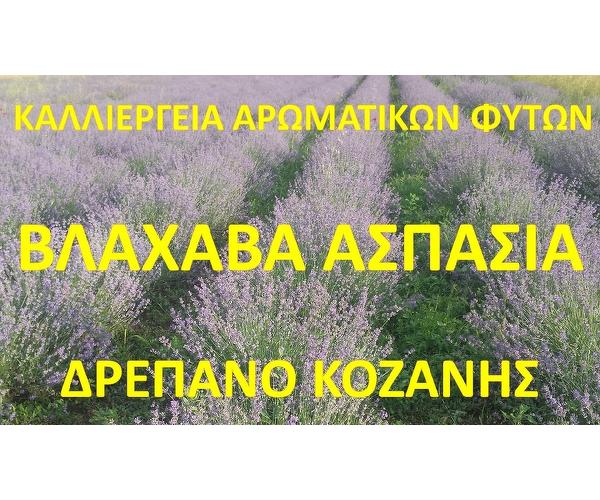 Kalliergia Aromatikon Fiton Vlaxava