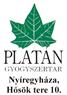 Platán Patika