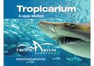 Tropicarium-Oceanárium