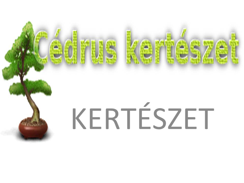 Cédrus Kertészet