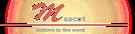 Mascot Computer Services