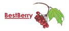 BestBerry