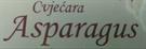 Cvjecara Asparagus