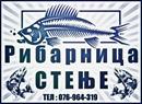 Ribarnica STENJE