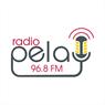 RADIO PELA Krivogashtani