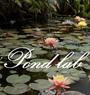 Pond Lab