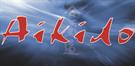 AIKIDO-rehabilitacja domowa,szkolenia osób prywatnych i firm- sztuki walki