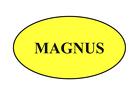 Magnus market