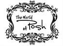 The World of Posh - Beauty Academy & Wellness Center