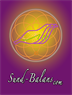 Sund Balans