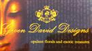 Gwen David Designs