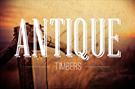 Antique Timbers LLC